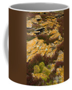Lichened Rocks Coffee Mug
