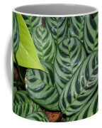 Light And Dark Green Leaves Coffee Mug
