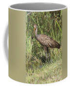 Limpkin In The Glades Coffee Mug