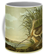 Long Billed Curlew Coffee Mug by Celestial Images