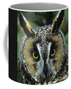Long-eared Owl Up Close Coffee Mug
