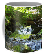 Lower Granite Falls 1 Coffee Mug