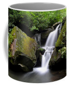 Lower Grotto Falls Coffee Mug