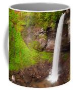Lower Hills Creek Falls Coffee Mug