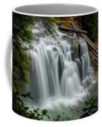 Lower Lewis Falls 2 Coffee Mug