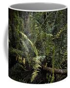 Loxahatchee Refuge-4 Coffee Mug