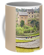 Madagascan Paddyfield Coffee Mug