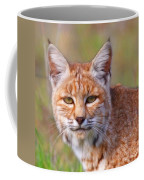 Magical Bobcat Coffee Mug