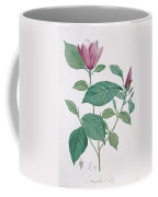 Magnolia Discolor, Engraved By Legrand Coffee Mug