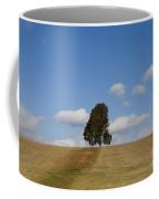 Manassas National Battlefield Park Coffee Mug
