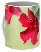 Mandevilla Named Sun Parasol Crimson Coffee Mug