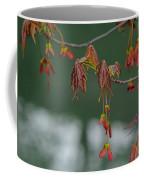 Maple Red Samaras Coffee Mug