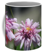 Marguerite Daisy Named Double Pink Coffee Mug
