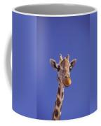 Masai Giraffe, Serengeti, Africa Coffee Mug