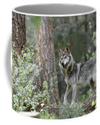 Mexican Grey Wolf 1 Coffee Mug