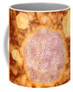 Microscopic View Of Canine Parvovirus Coffee Mug