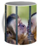 Monkey Species Cebus Apella Behind Bars Coffee Mug