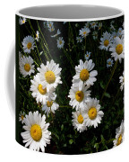 Mountain Daisies Coffee Mug