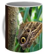 Mournful Owl Butterfly Coffee Mug
