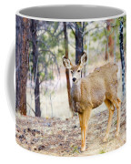 Mule Deer Does Coffee Mug