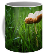 Mushroom Growing Wild On Lawn Coffee Mug
