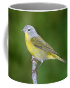 Nashville Warbler Vermivora Ruficapilla Coffee Mug