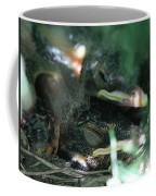 Nest Of American Robins Coffee Mug
