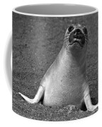 Northern Elephant Seal Weaner Coffee Mug