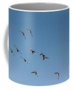 Northern Pintails  Coffee Mug