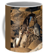 Nz Yellow-eyed Penguins Or Hoiho Feeding The Young Coffee Mug