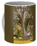 Oak Alley Backyard Coffee Mug