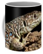Ocellated Lizard Timon Lepidus Coffee Mug
