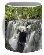 Odom Creek Waterfall Georgia Coffee Mug
