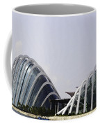 Oil Painting - Both Of The Conservatories Of The Gardens By The Bay In Singapore Coffee Mug