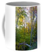 On Top Of Bald Mountain Coffee Mug