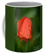Orange Tulip Coffee Mug