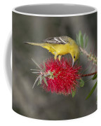 Orchard Oriole Coffee Mug