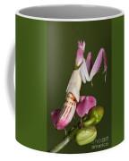 Orchid Mantis Coffee Mug