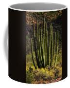 Organ Pipe Cactus  Coffee Mug