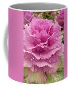 Ornamental Cabbage Coffee Mug