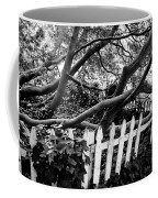 Overflowing A Picket Fence Coffee Mug