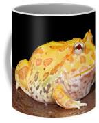 Pac Man Frog Ceratophrys Coffee Mug