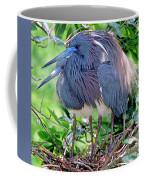 Pair Of Tricolored Heron At Nest Coffee Mug