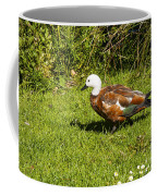 Female Paradise Duck Coffee Mug
