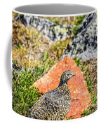 Partridge 2 Coffee Mug
