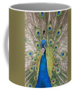 Peacock Full Plumage Coffee Mug