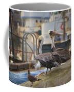 Pelican Duo Coffee Mug