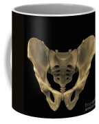 Pelvic Bones Male Coffee Mug