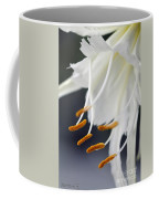Peruvian Daffodil Named Advance Coffee Mug