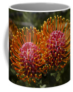 Pincushion Flowers Coffee Mug